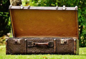 Godne polecenia walizki