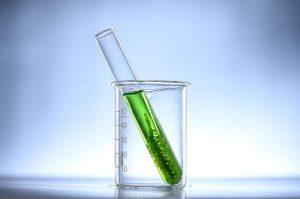 Fascynujące właściwości chlorelli