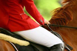 Jak zbudowana jest kamizelka jeździecka?
